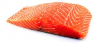 Salmão Congelado para Sushi