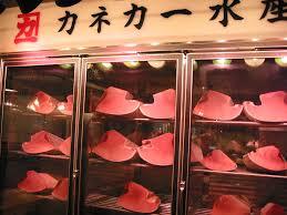 Atum Congelado para Sushi